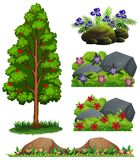 En uppsättning av Forest Element stock illustrationer