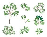 En uppsättning av isometriska gröna träd och växter Royaltyfri Fotografi