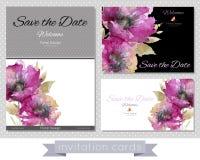En uppsättning av kort med rosa vallmo Arkivbilder