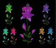 En uppsättning av liljor av olika färger Broderi av jeans Broderi är slät Vektorillustration på en svart Royaltyfria Foton