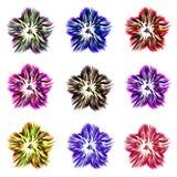 En uppsättning av nio blommor av olika färger på en vit bakgrund