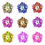 En uppsättning av nio färgrika blommor av olika färger på en vit bakgrund