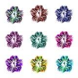 En uppsättning av nio härliga blommor av olika färger på en vit bakgrund