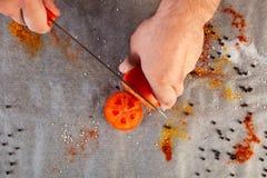En uppsättning av nya ingredienser för att laga mat jordnötkött arkivfoto
