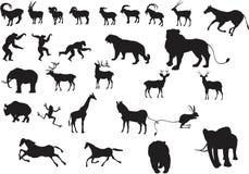 En uppsättning av vektordjurkonturer arkivfoton