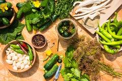 En uppsättning för hem- på burk grava för gurkor örtar för fjärdcardamonvitlök blad vanilj för kryddor för pepparrosmarinar salt Arkivbild