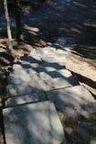 En urinnevånare stenar trappa i skogen arkivbild