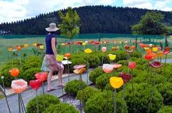 En utomhus- exponeringsglasträdgård nära Taupo, Nya Zeeland Royaltyfri Bild