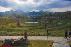 En väderkvarn i huangshan som är västra av huangshan, anhui landskap Arkivfoton