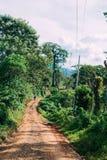 En väg Arkivfoto
