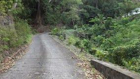 En väg i behov av reparationen på en liten ö i det karibiskt arkivfilmer