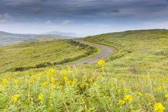 En väg på den easter ön Fotografering för Bildbyråer