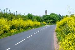 En väg till och med fält Arkivfoto