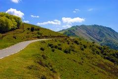 En väg till och med Pyreneesna Royaltyfria Bilder