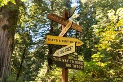 En vägvisare indikerar sammanlagt riktningar, var de största träden kan ses i redwoodträdnationalpark, Kalifornien, USA arkivfoton