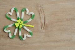 En växt av släktet Trifolium för fyra blad som göras ut ur den gröna och vita godisrottingen Arkivbilder