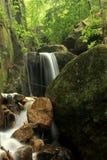 En vagga vattenfall Arkivfoton