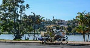 En vagn utan hästen nära sjön royaltyfria foton