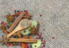En variation av kryddor Royaltyfri Bild
