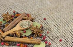 En variation av kryddor Arkivbild