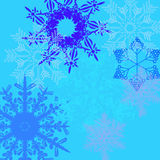 En variation av snöflingor Royaltyfri Bild