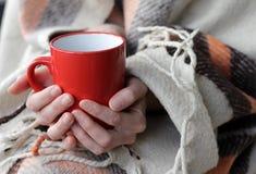 En varm drink och en varm filt i förkylningen Arkivbilder