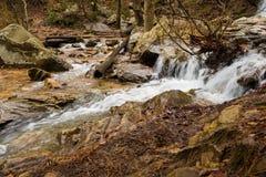 En vattenfall flödar efter ett regn i en gömd kanjon på ett berg Royaltyfria Foton