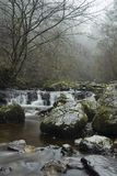 En vattenfall och en flod in i morgonmisten fotografering för bildbyråer