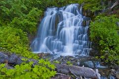 En vattenfall på Mt Rainer Arkivbild