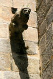 En vattenkastare dekorerar fasaden av ett kyrkligt (Frankrike) Royaltyfria Foton