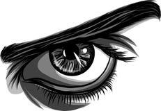 En vektor av män för ett öga på vit bakgrund royaltyfri illustrationer