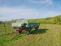 En vingård i fall Royaltyfri Fotografi