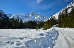 En vinter är i berg Fotografering för Bildbyråer