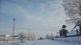 En vinter är rolig Royaltyfria Foton