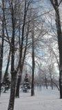 En vinter är rolig Arkivfoto
