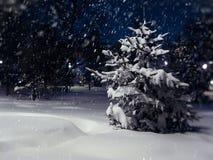 En vinter landskap royaltyfria foton