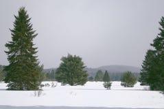 En vinter landskap arkivfoton