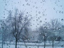 En vinterdag Arkivfoto