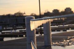 En vintersikt i Chicago royaltyfria bilder