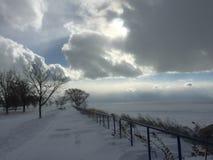 En vintrig blandning Royaltyfria Bilder