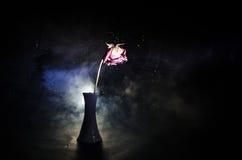 En vissna ros betyder borttappad förälskelse, skilsmässa, eller ett dåligt förhållande, döda steg på mörk bakgrund Arkivfoto