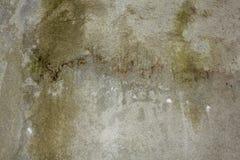 En vit grå betongvägg med en grov yttersida grön moss skrapor på betongväggen royaltyfri fotografi