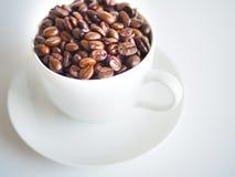 En vit kopp fyllde med bruna kaffebönor Fotografering för Bildbyråer