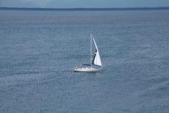 En vit segelbåt med ett öppet seglar på ett öppet vatten för det blåa havet royaltyfria foton