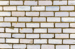 En vit tegelstenvägg Royaltyfri Bild