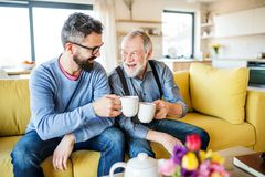 En vuxen son och en h?g fader som inomhus sitter p? soffan hemma och att dricka te arkivfoto