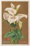 En vykort för påskhälsningtappning Royaltyfri Foto