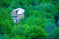 En vykortstuga på skogträdet Arkivfoton
