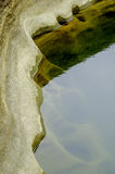 En waterhole Arkivfoton