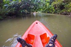 En whitewaterkayaker, medan vågen på floden i det Satun landskapet, arkivbilder